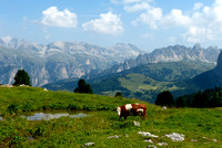 Val Gardena near Sella Pass